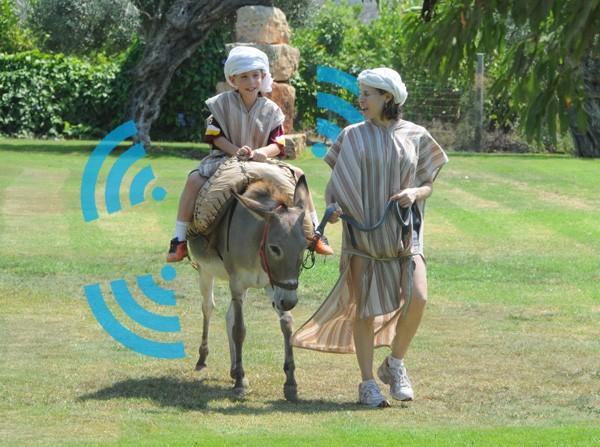 В Израиле на ослов установили WiFi роутеры