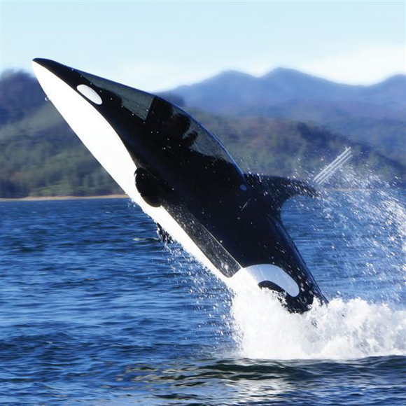 Подводные скутеры видео фото 132-873