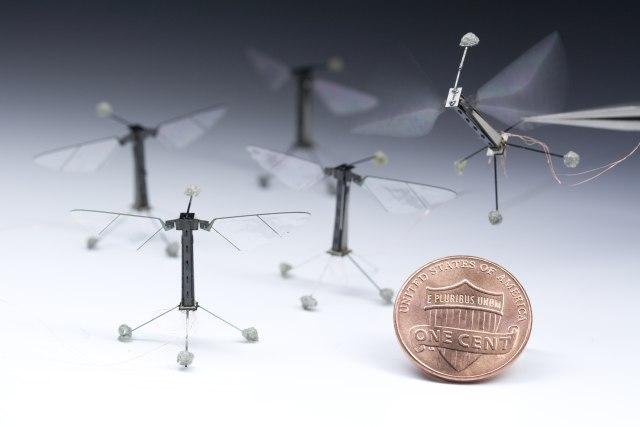 Ученые показали летающего робота-насекомое (видео)