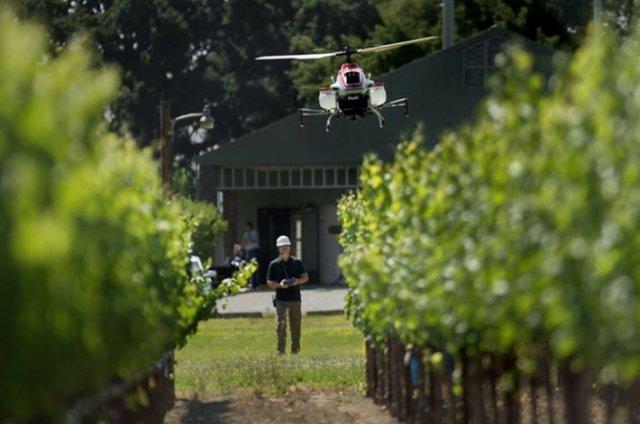 Беспилотники в сельском хозяйстве (3 фото + видео)