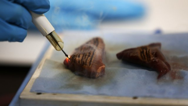 iKnife - cкальпель, определяющий раковые клетки по запаху