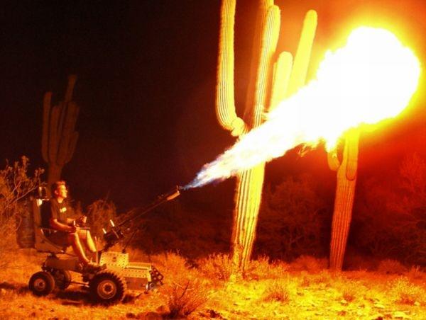 Самоходный огнемет (7 фото + видео)