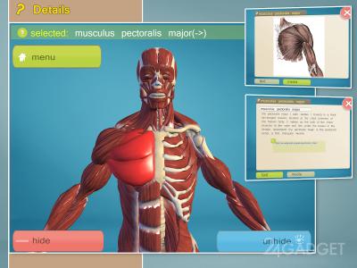 скачать приложение анатомия - фото 5