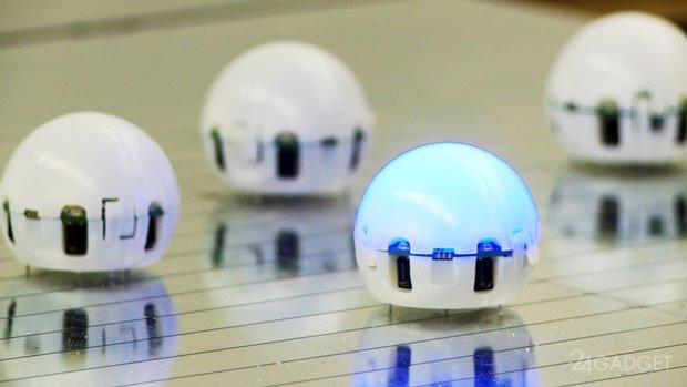 Swarm - бюджетный рой роботов (видео)