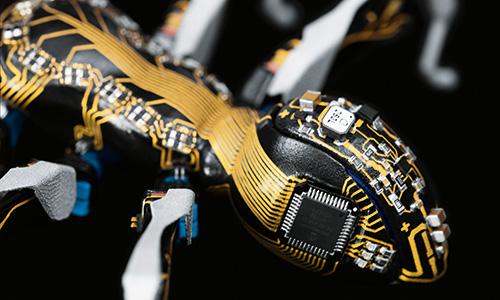 FESTO создал роботов по подобию муравьёв и бабочек (8 фото + 2 видео)