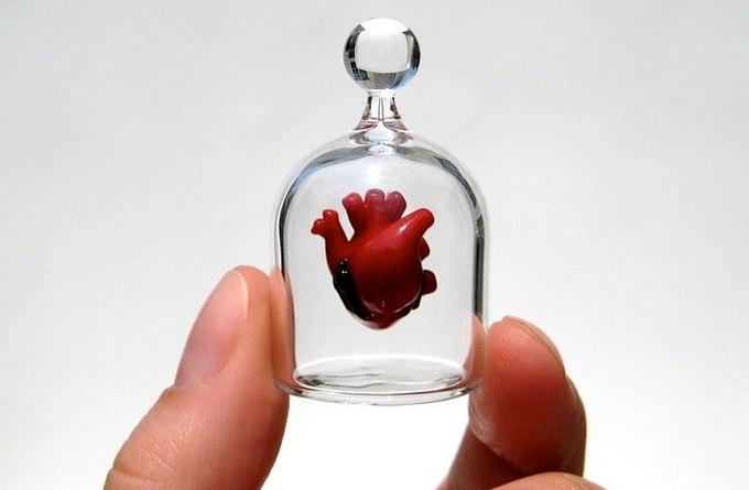 Учёным удалось вырастить миниатюрное человеческое сердце (2 фото)