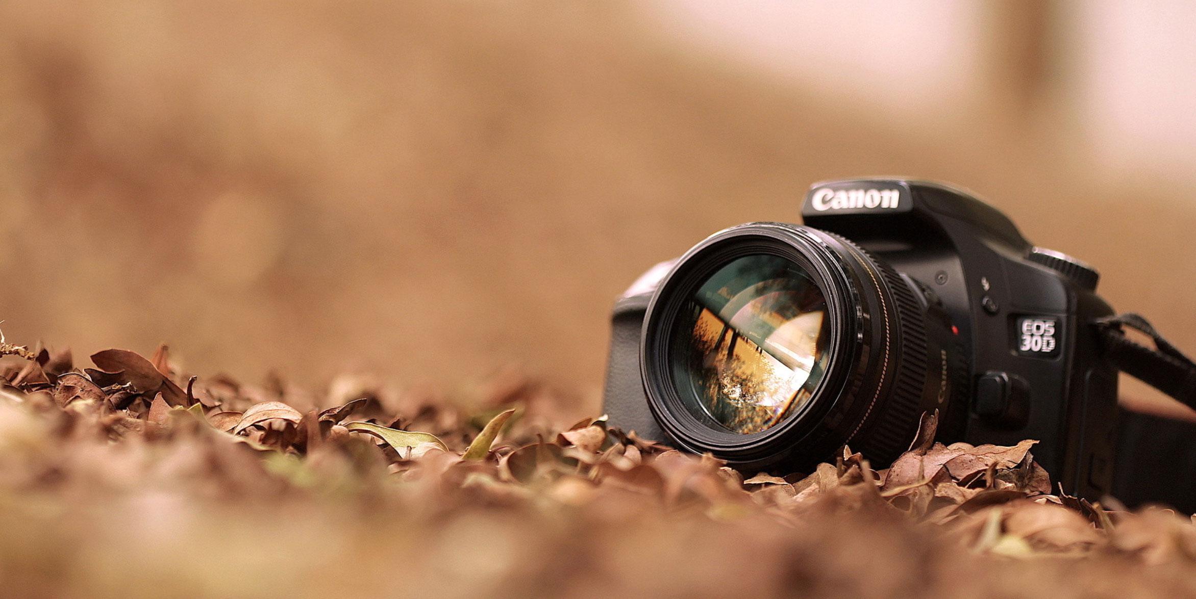 Canon selphy cp910 wireless compact photo printer Live Scan Fingerprinting - Passport/Visa/Citizenship/ID