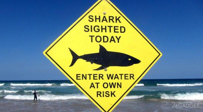 Беспилотники будут защищать австралийцев от акул (7 фото)