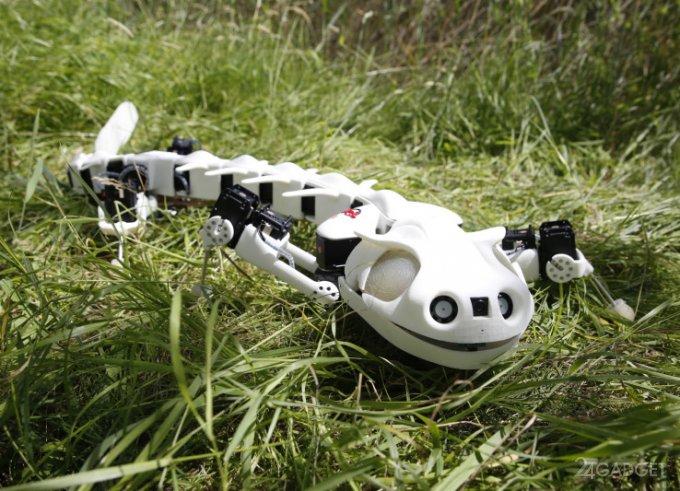 Робот-саламандра двигается, как настоящая амфибия (видео)