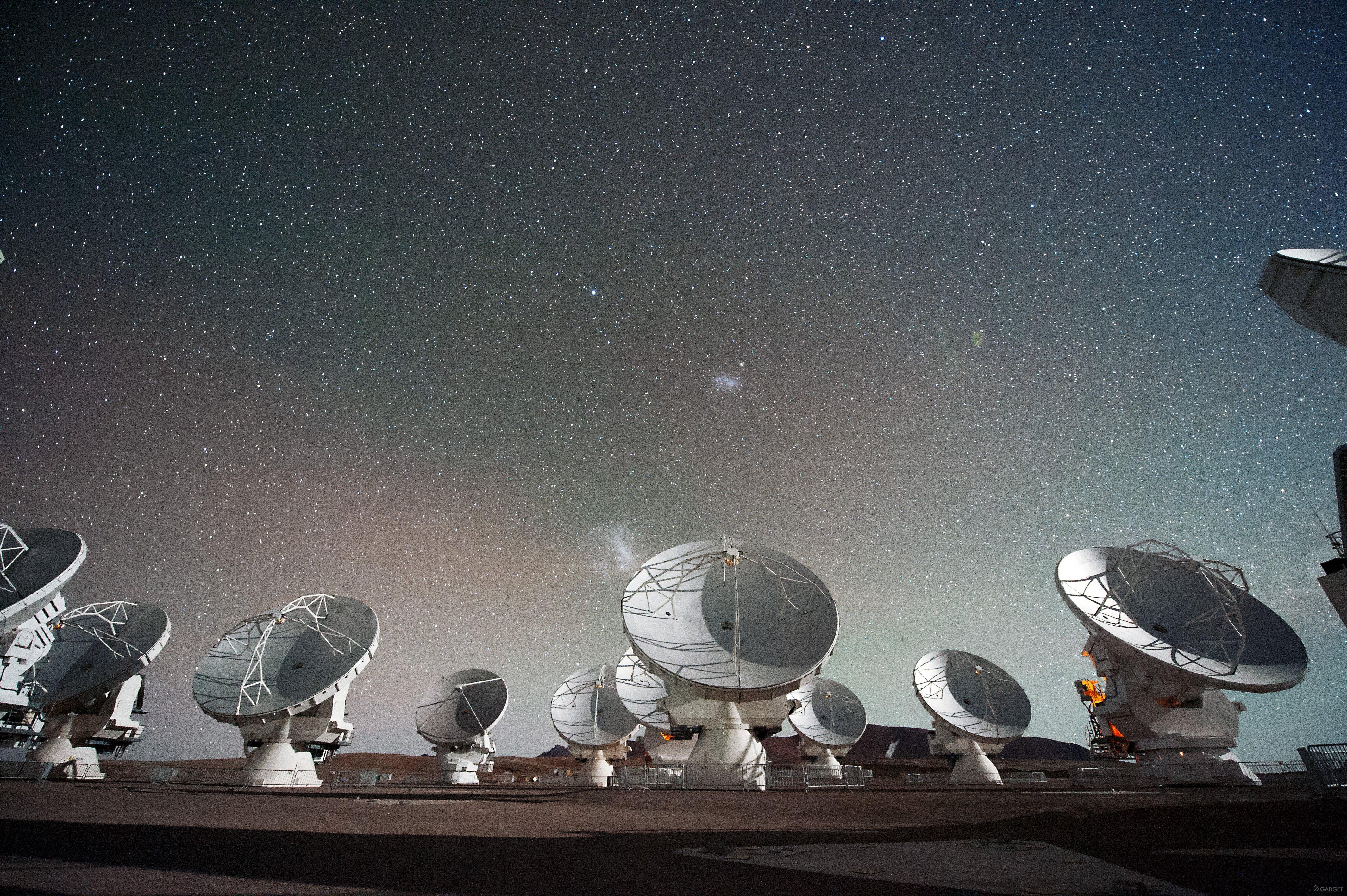 кролика рекс картинки грохот вселенского масштаба услышали с земли для ночного клуба