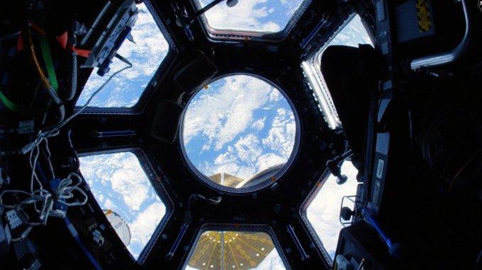Плесень, выросшая в космосе, смертельно опасна для космонавтов