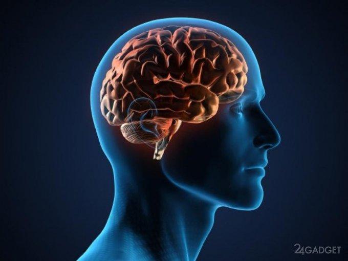 Ученые нашли в мозге человека «центр Плацебо» (3 фото)