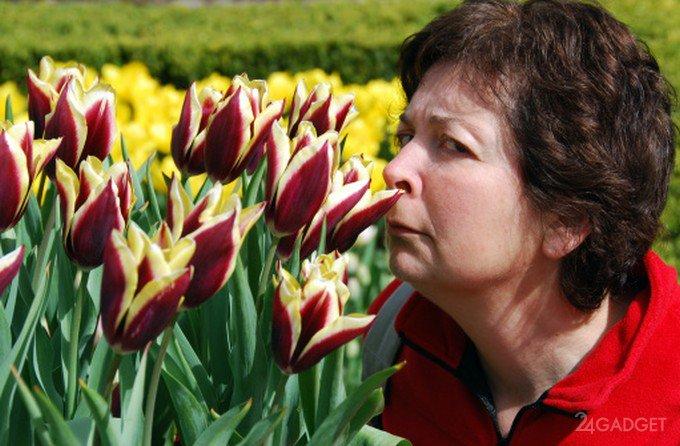 Болезнь Альцгеймера предлагают диагностировать носом