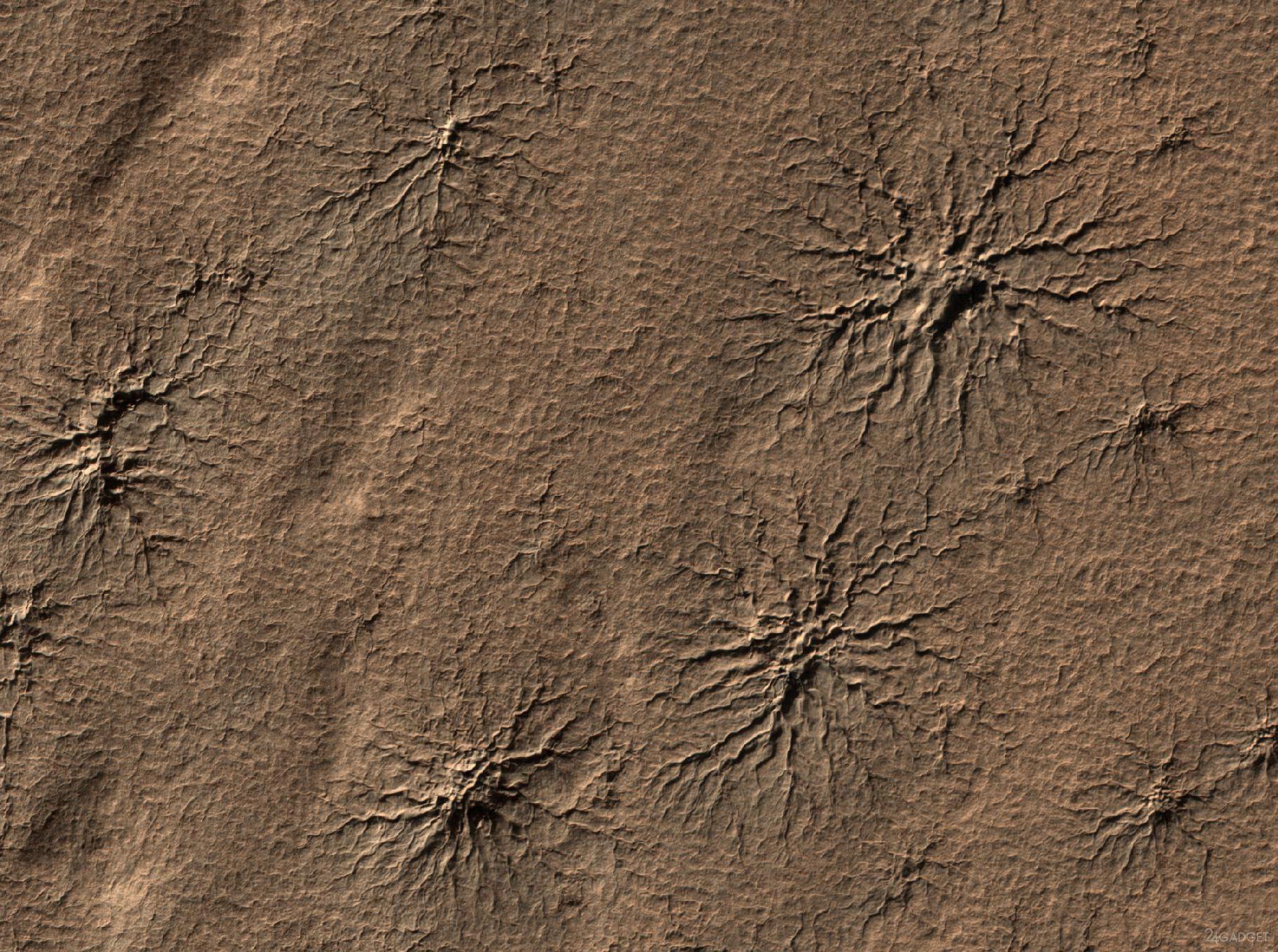 Картинки по запросу черные пауки на марсе