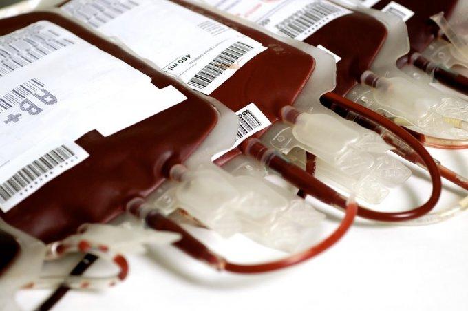 Разработана методика получения больших объемов «искусственной крови»