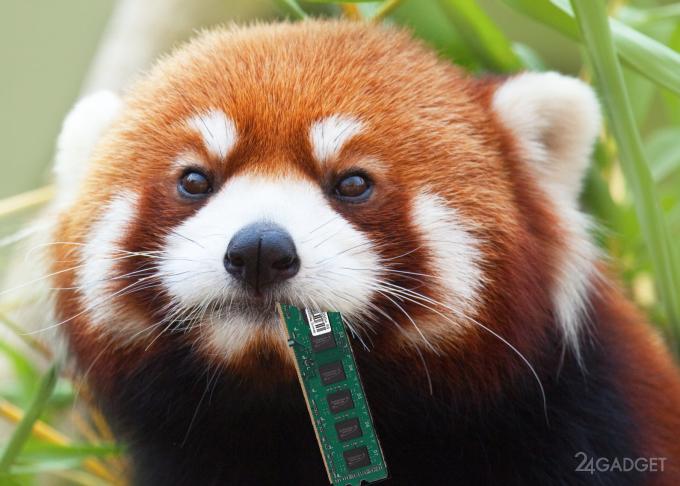 Функция оптимизации позволит Firefox лучше работать на слабых ПК (3 фото)