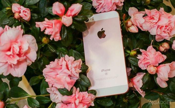 iPhone SE занял первое место среди смартфонов, которыми довольны потребители