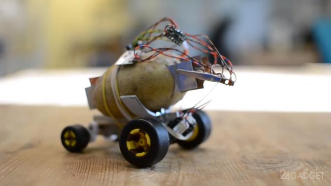 В Польше создали картофельного мини-робота (2 фото + видео)