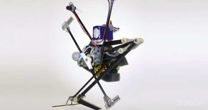 Одноногий робот-кузнечик Salto-1P (видео)