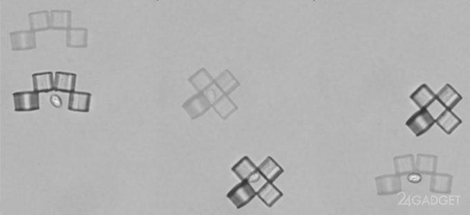 Наноботы против раковых клеток (2 видео)