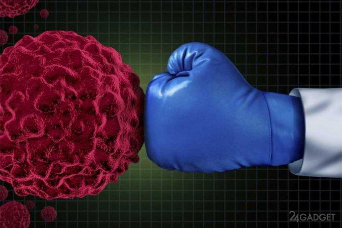 Открыт метод клеточной терапии, тормозящий развитие онкологических заболеваний