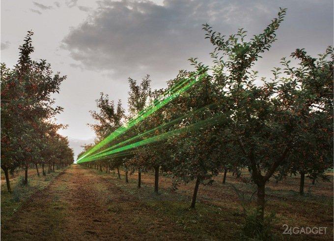Фермер выбрал современные технологии для защиты урожая от птиц (2 видео)