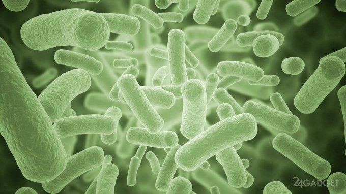 Эффективность антибиотиков определит экспресс-тест