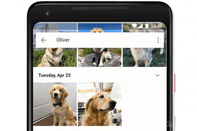 Сервис «Google Фото» научился распознавать домашних питомцев
