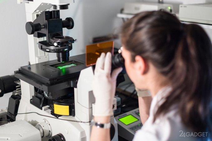 В США ободрена генная терапия для лечения рака