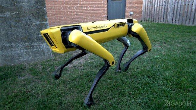 Новый робот Boston Dynamics симпатичнее предшественника (2 фото + видео)