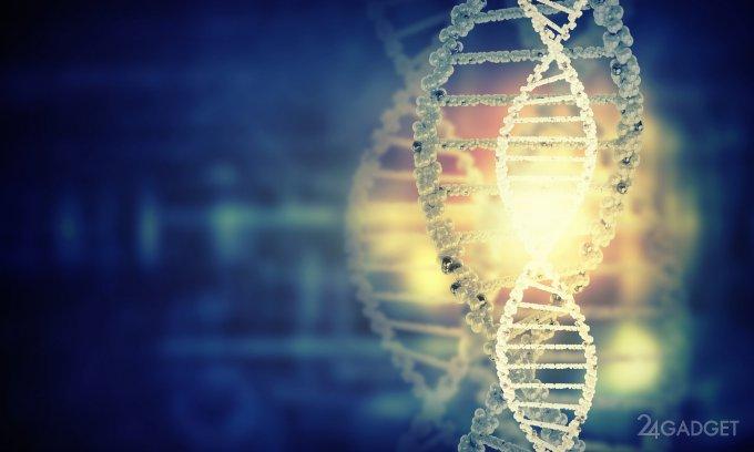 Портативная генетическая лаборатория поможет бороться с браконьерами (2 фото)