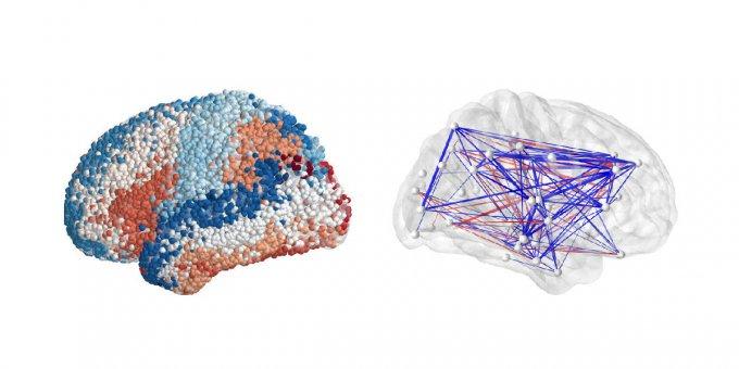 Полная электрическая карта мозга объясняет принцип запоминания