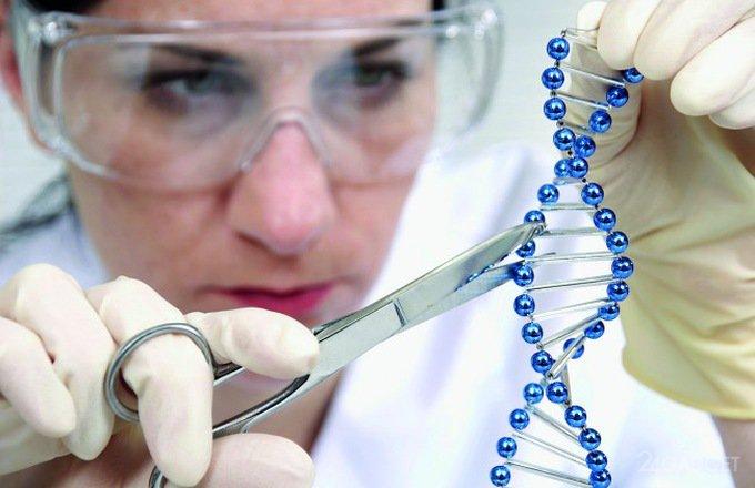 Новый метод CRISPR не нарушает целостность ДНК