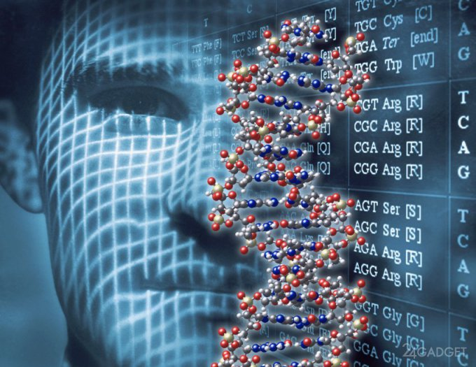 Новый метод позволяет быстро идентифицировать человека по ДНК