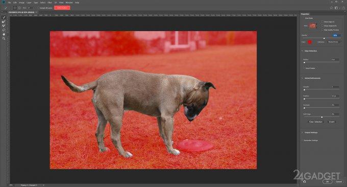 В Photoshop появилось выделение объектов в один клик (7 фото + видео)