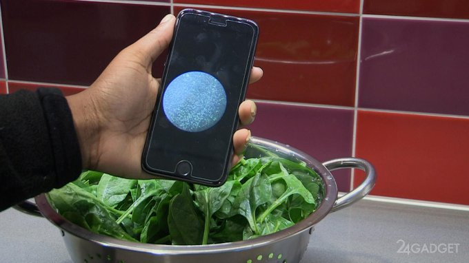 Новый чип для смартфона определит сколько бактерий в еде