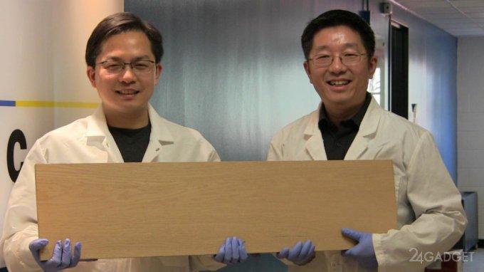 Новая древесина заменит титан и сталь