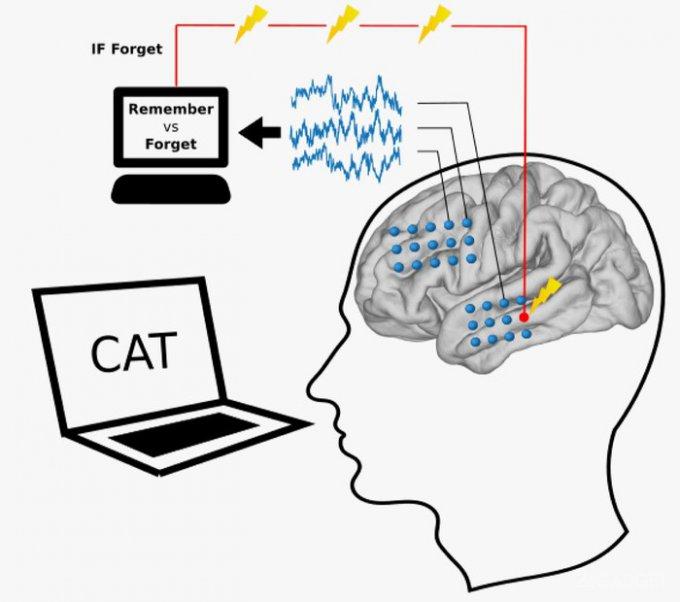 Искусственный интеллект умеет развивать человеческую память