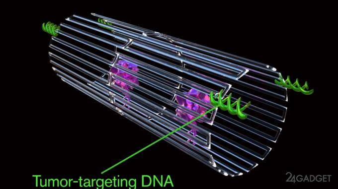 Созданы нанороботы для уничтожения раковых опухолей