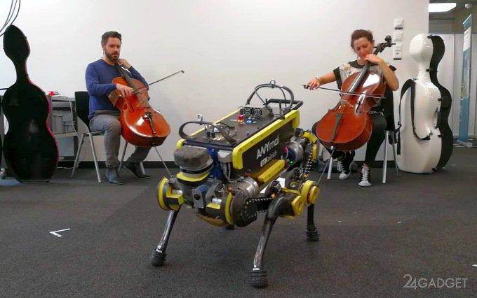 Четвероногий робот «отжигает» под живую и современную музыку (видео)