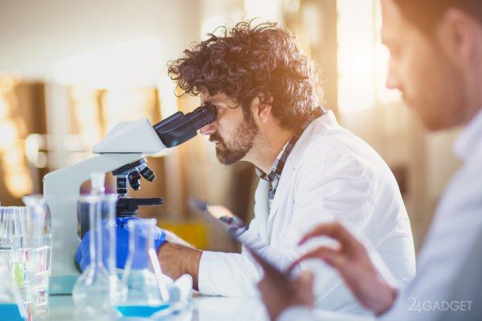 Бактерии «научили» ученых синтезировать аммиак