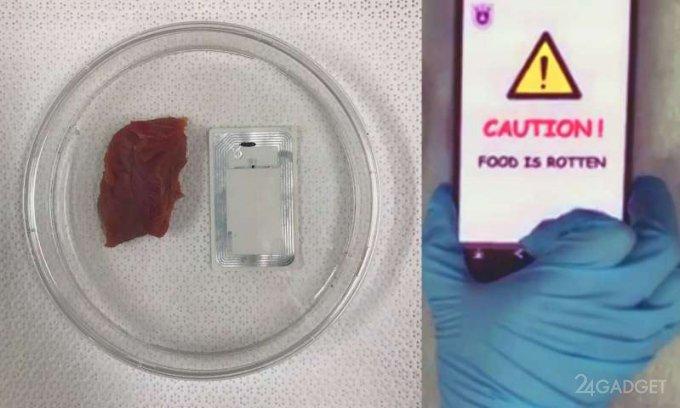 Смартфон научили распознавать испорченные продукты (3 фото)