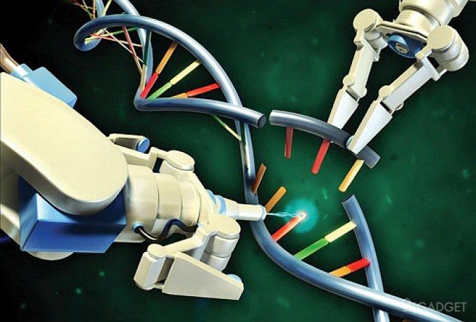 Британцы признали редактирование человеческого генома моральным