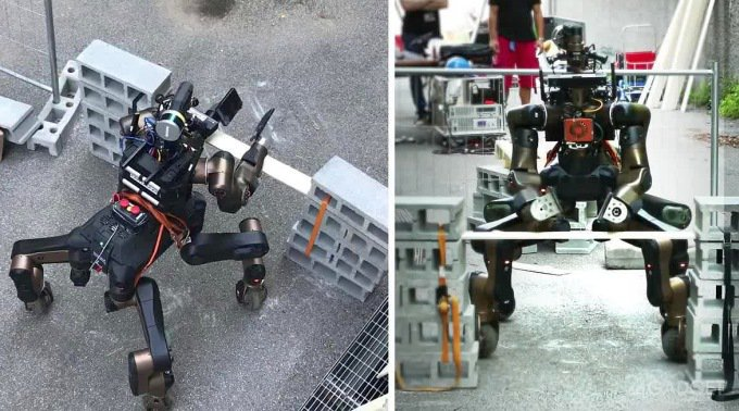 Робот-спасатель показал свои боевые навыки (5 фото + видео)