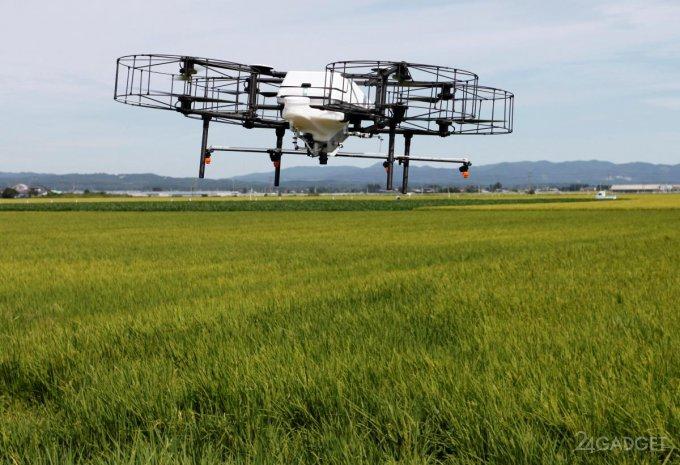 Технологии заставят японское население вернуться в село