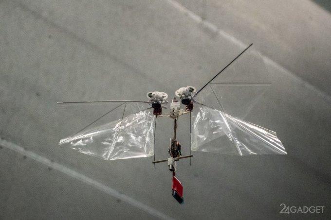 DelFly выпустила нового робота-муху – Nimble