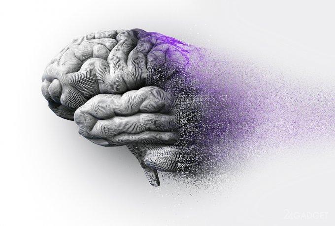 Разделение болезни Альцгеймера на 6 видов повысит эффективность её лечения (3 фото)