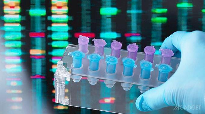 Family Tree DNA передала ФБР базу ДНК своих клиентов (3 фото)