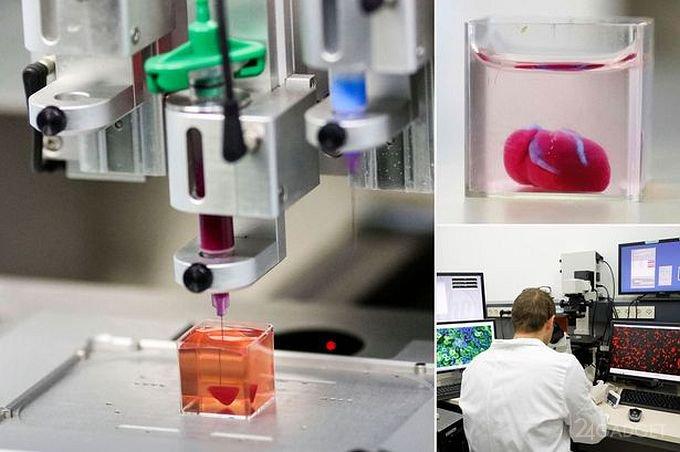 Напечатано первое в мире 3D-сердце из клеток человека (9 фото + видео)