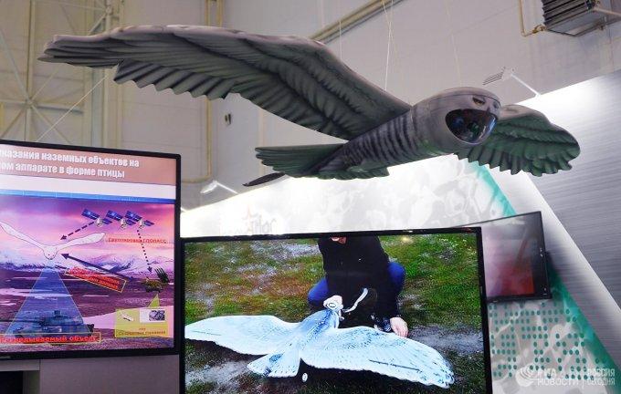 Беспилотник в виде совы предложили российские военные (5 фото)